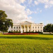 Bild Weißes Haus Garten