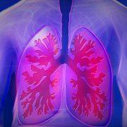 Bild Gesundheit Studie