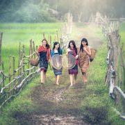 Bild Indonesien Landwirtschaft