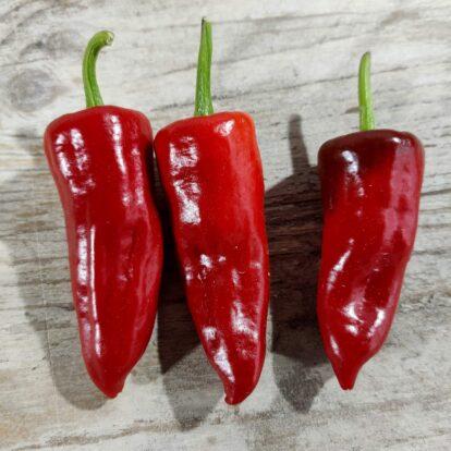 Pepperoni de Eusebio